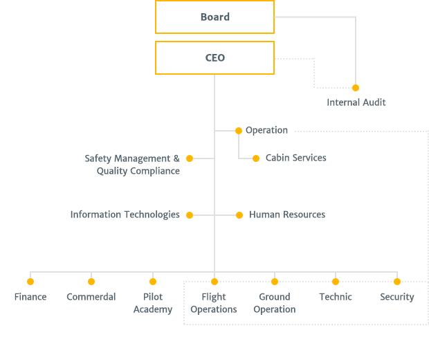 Company Organization Chart  Pegasus Yatrmc likileri
